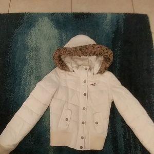 Hollister Winter Jacket with detached hood